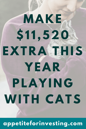 Cats e1534901543904 - Make $11,520 Extra This Year Playing with Cats